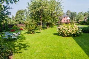 4 grunde til at købe en træpavillon og sætte den op i haven